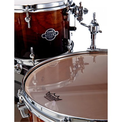 SONOR Ascent Stage 3 Burnt Fade
